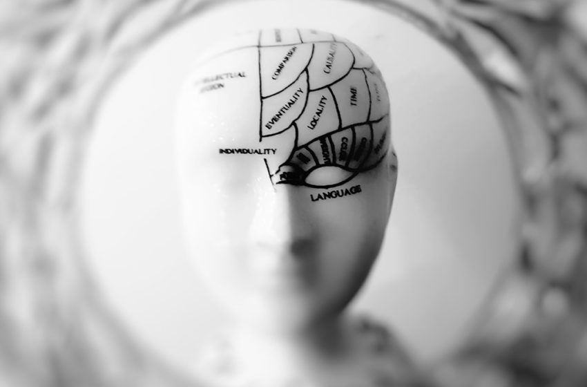 The 'Left Brain' And 'Right Brain' Approach To Marketing