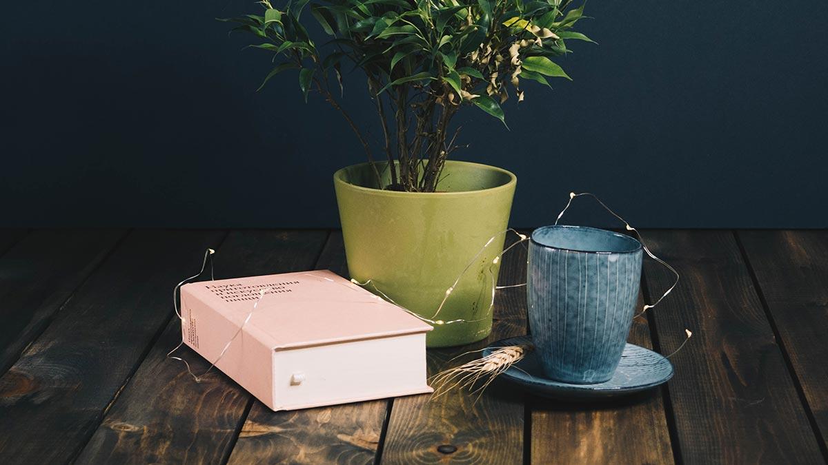 5 Best Books On Influencer Marketing