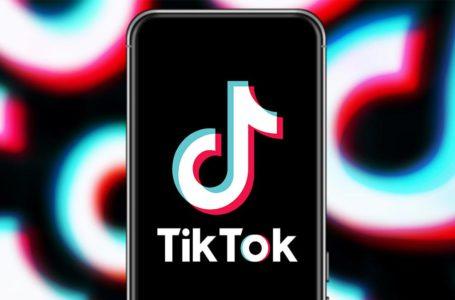 TikTok Versus The World